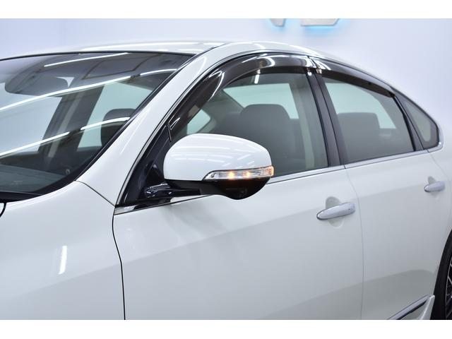 250XV Wイカリングライト 新品フルエアロ 車高調KIT(19枚目)