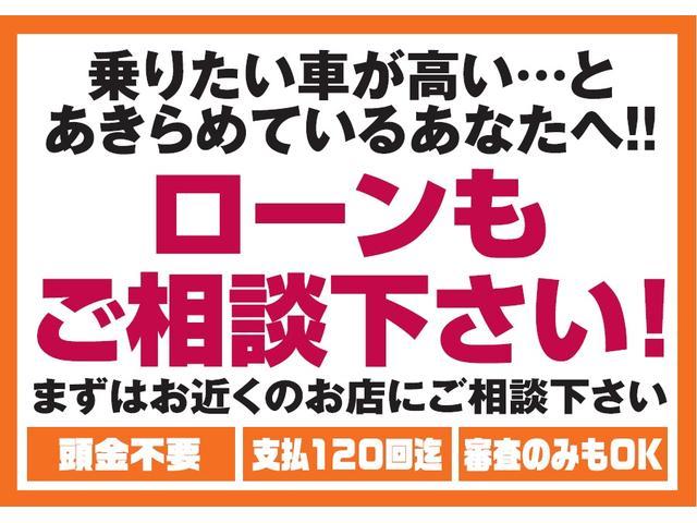 2トーンカラースタイル G・Aパッケージ  シティブレーキ(14枚目)