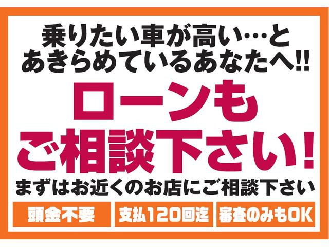 ライダー ブラックライン 純正SDナビ バックカメラ ETC(6枚目)