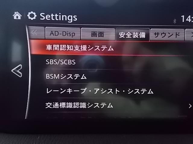 15S プロアクティブ 禁煙 レーダークルーズ 純正SDナビ(16枚目)