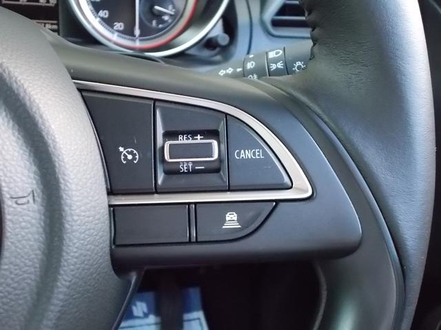 XRリミテッド セットオプション付(アルミ・LED)サポカー(19枚目)