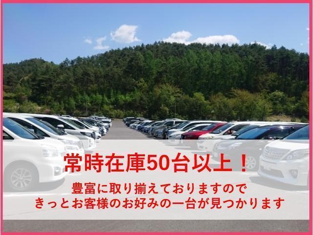 PCスペシャル 4WD リフトアップ(24枚目)