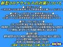 アクティブギア 特別仕様車 アルパイン 9インチBIGX CD/DVD再生 BTオーディオ 地デジ 両パワスラ 後席フリップダウンモニター Bカメラ ETC シートヒーター ハーフレザーシート(79枚目)