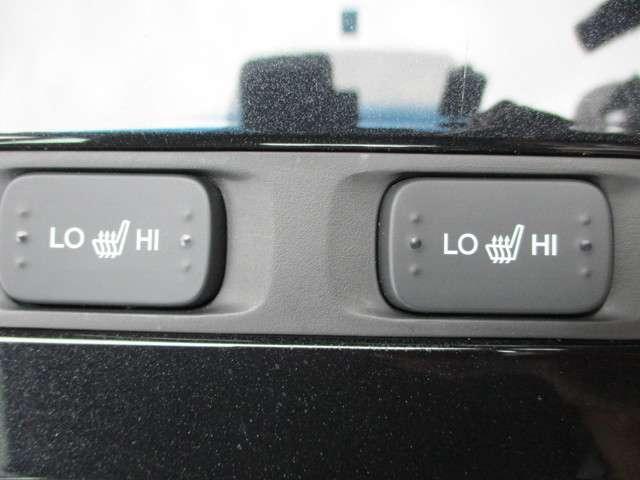EX センシング運転支援システム 電動シート ドラレコ(10枚目)