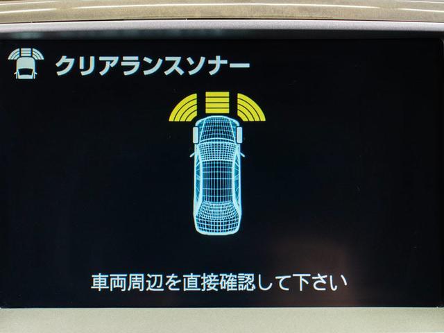 Cタイプ 社外19AW エアロ 黒革シート HDD クリソナ(14枚目)