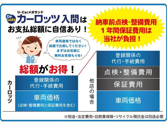 DICE-G メモリーナビ 両側パワースライド 地デジ(20枚目)