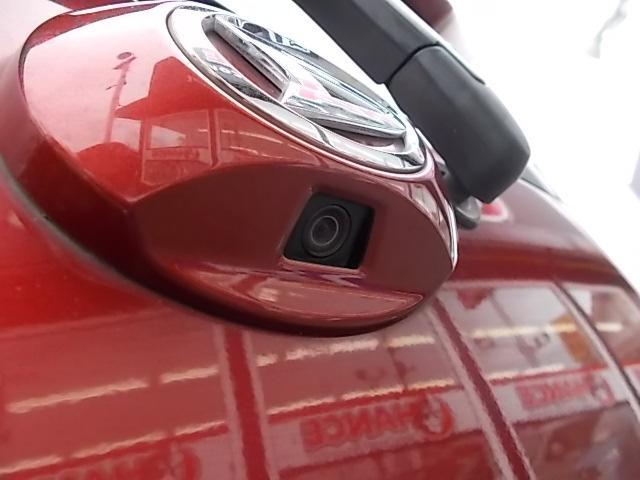 カスタム RSスマートセレクションSA ナビ フルセグTV Bカメラ LEDヘッドランプ(30枚目)