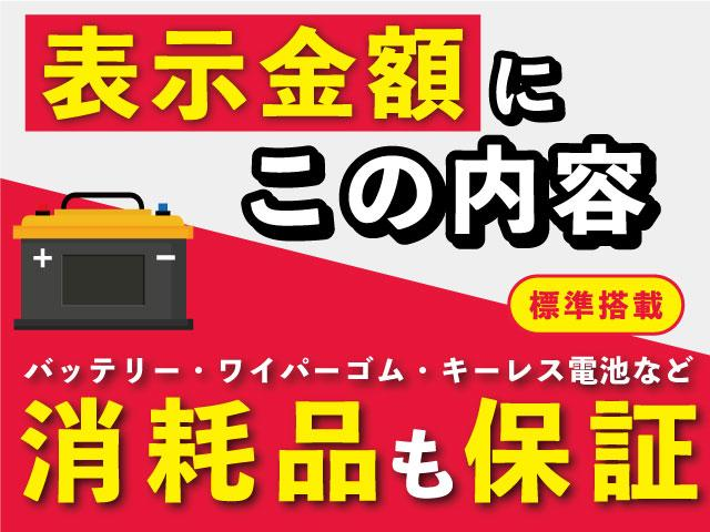 13G・Fパッケージ コンフォートエディション SDナビ(3枚目)