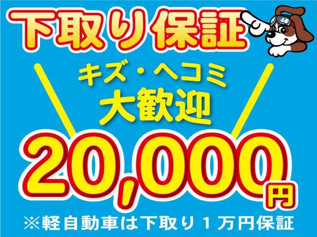 ハイウェイスター 社外ナビ DVD再生 片側電動スライドドア(3枚目)