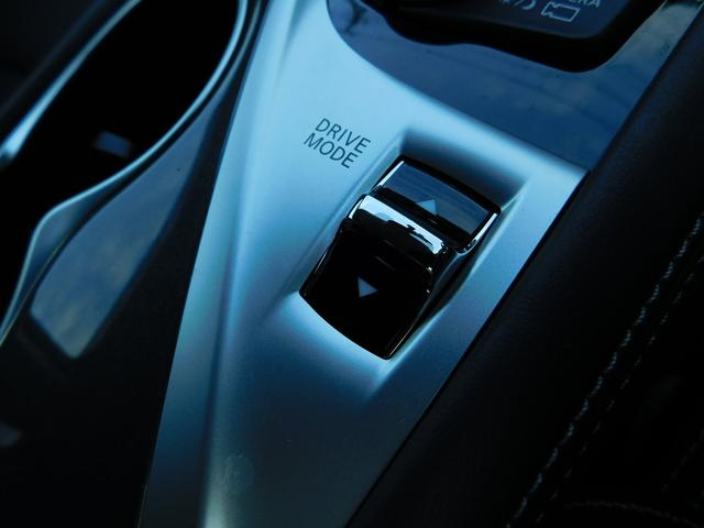 350GT ハイブリッド タイプP 黒革 アラビュー LED(19枚目)