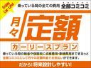RS RHT スルガスピードマフラー カロッツェリアナビTV(42枚目)