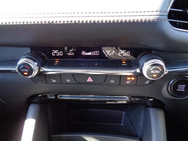 20Sプロアクティブ ツーリングセレクション 弊社デモカーアップ 衝突軽減ブレーキ カープレイ対応8.8インチナビ レーンキープアシスト 自動ハイビーム(13枚目)