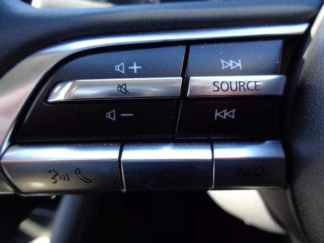 20Sプロアクティブ ツーリングセレクション 弊社デモカーアップ 衝突軽減ブレーキ カープレイ対応8.8インチナビ レーンキープアシスト 自動ハイビーム(36枚目)