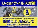 SSR-Xリミテッド ナビ ルーフレール バックカメラ(49枚目)