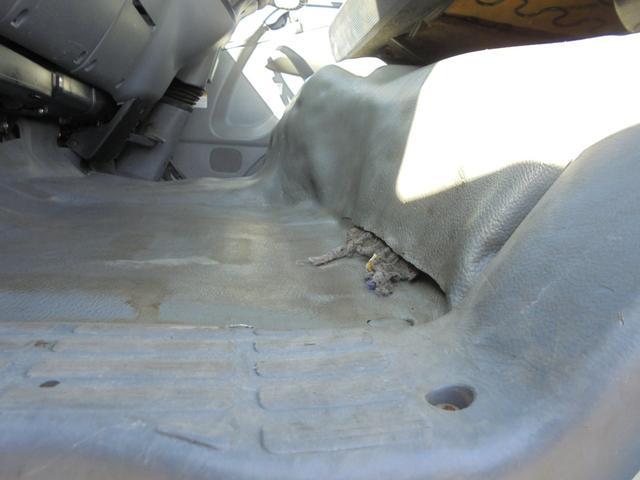 助手席側のフロアカーペットに破れがあります。