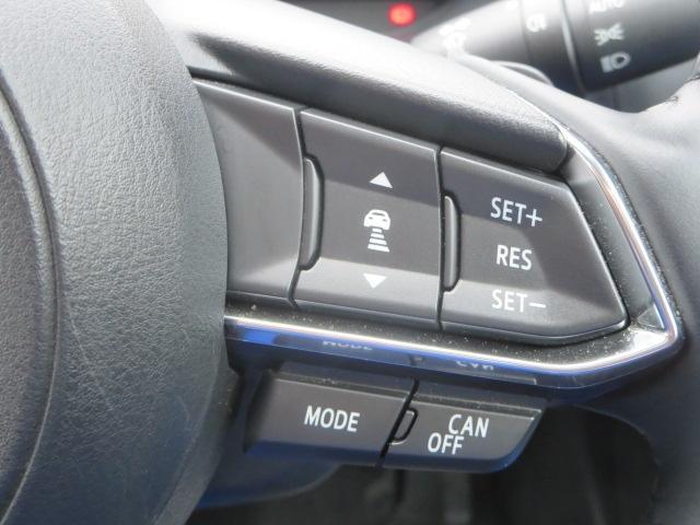 1.5 15S プロアクティブ 4WD 360ビューモニター(12枚目)