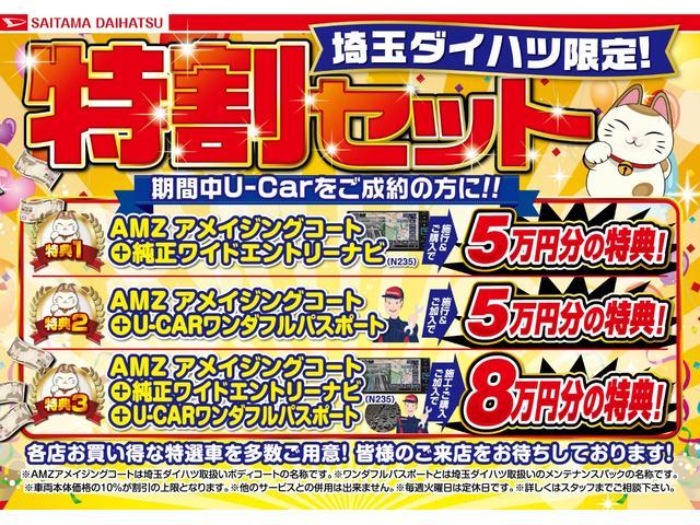 スタイル SAIII・バックカメラ・カーペットマット付き(2枚目)