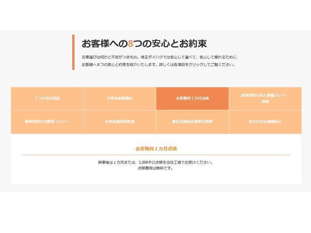 GターボリミテッドSAIII ナビ・パノラマモニター(45枚目)
