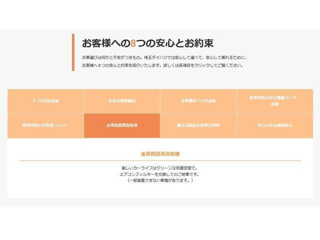 GターボリミテッドSAIII ナビ・パノラマモニター(48枚目)