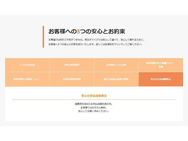 GターボリミテッドSAIII ナビ・パノラマモニター(50枚目)
