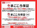 スタイル SAIII・バックカメラ・カーペットマット付き(22枚目)