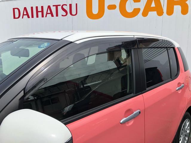 スタイル SAIII バックカメラ 純正マット バイザー(8枚目)