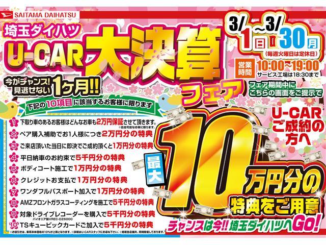 シルク Gパッケージ SAIII 純正フルセグナビ マット(2枚目)