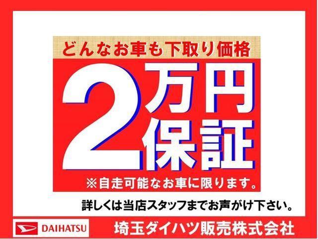 スタイル SAIII バックカメラ 純正カーペットマット(21枚目)