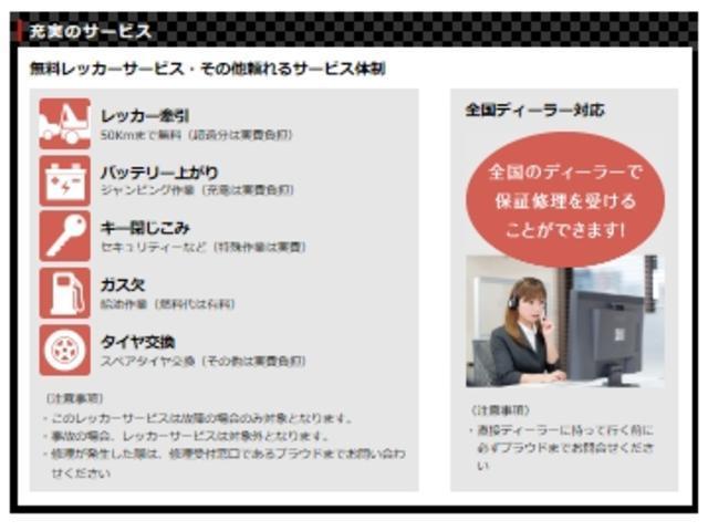 アエラス 7人 純正ナビ フルセグTV Bカメラ 両側電動扉(32枚目)