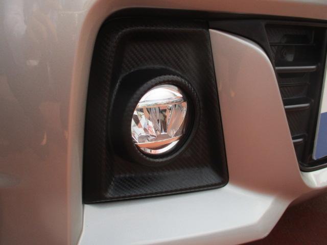 スティングレー HYBRID X DSBS LEDライト(9枚目)