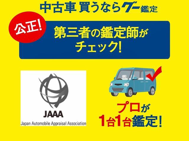 15X インディゴセレクション 特選車 HDDナビ(3枚目)