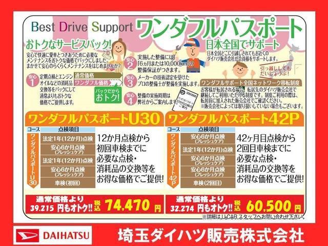 X リミテッドSAIII デモカーアップ(39枚目)
