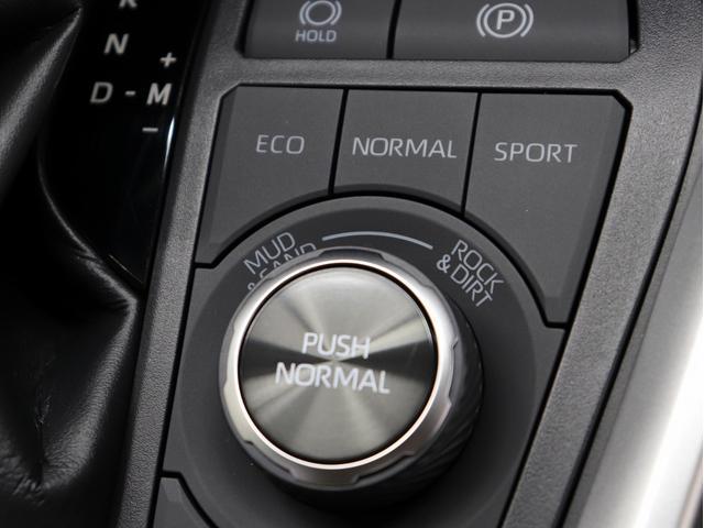 アドベンチャー 黒レザーシート リフトアップ 17インチ新品アルミ 新品TRDガーニッシュ KADDIS製オーバーフェンダー フォグLED(35枚目)