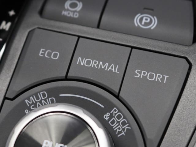アドベンチャー 4WD 黒皮パワーシート 新品アルミホイール リフトアップ 新品ディスプレイオーディオ Apple/AndroidCarPlay対応 シートH/シートAC ワンオーナー(34枚目)