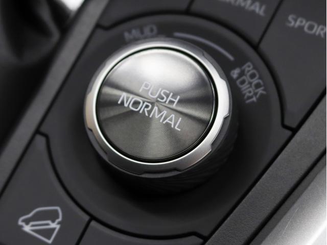 アドベンチャー 4WD 黒皮パワーシート 新品アルミホイール リフトアップ 新品ディスプレイオーディオ Apple/AndroidCarPlay対応 シートH/シートAC ワンオーナー(35枚目)