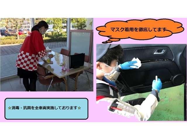G ジャストセレクション 純正ナビ フルセグTV 両側電動ス(3枚目)