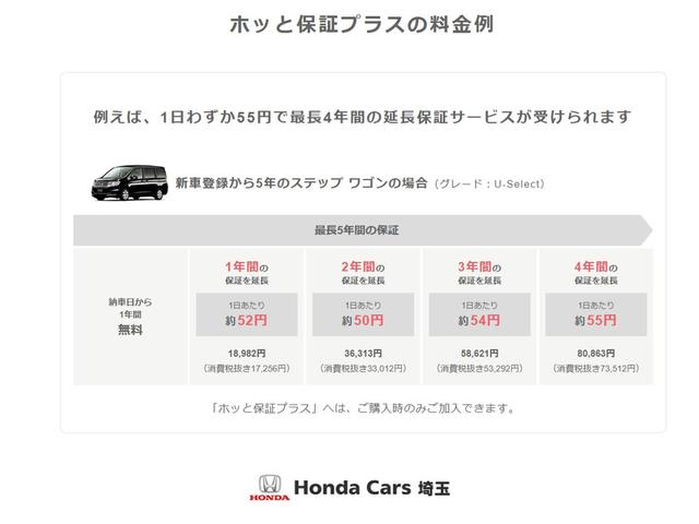 13G・L ホンダセンシング 当社試乗車 純正メモリーナビR(40枚目)