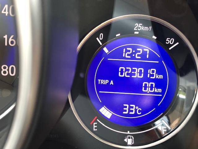 13G ワンオーナー車 保証付 メモリーナビ ETC付(18枚目)