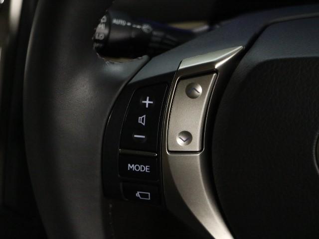 RX450h HDDナビ フルセグ 1オーナー 4WD(10枚目)