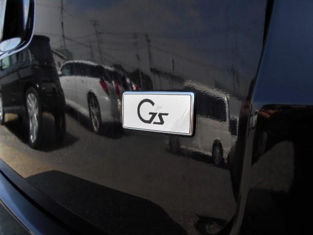 ZS G's 7人 両側電動ドア フリップダウンモニター(13枚目)