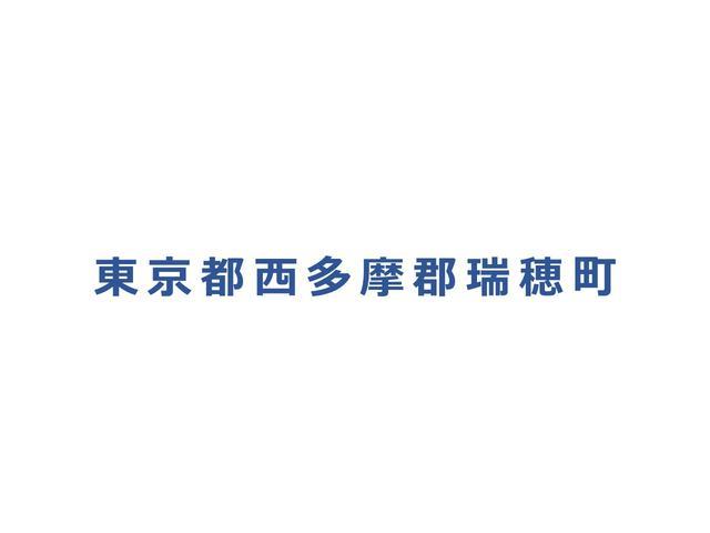 カスタム X ナビ HID CD ベンチシート アルミ(33枚目)