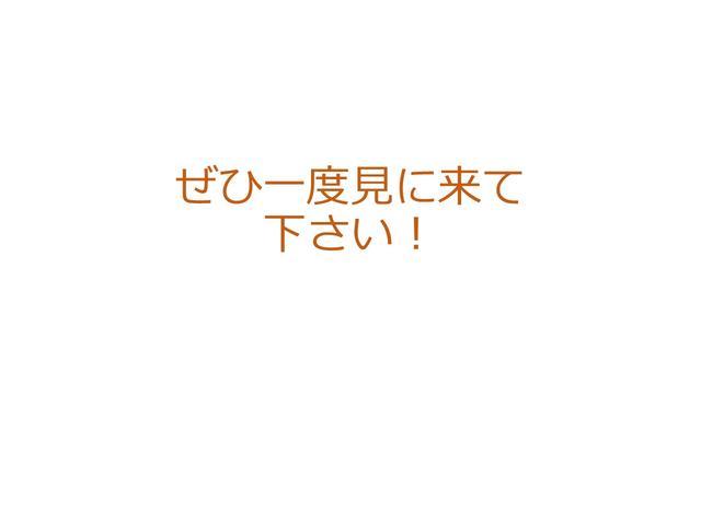 カスタム X ナビ HID CD ベンチシート アルミ(40枚目)