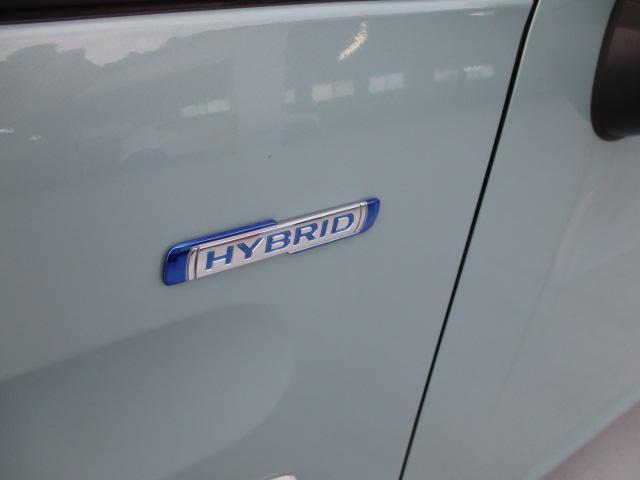 HYBRID G セーフティパッケージ(13枚目)