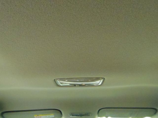 ミツオカ リューギワゴン 15DX 特別塗装色 SafetySenseC スマートキー