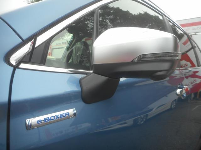 アドバンス Rレール 視界拡張 運転支援 登録済未使用車(13枚目)