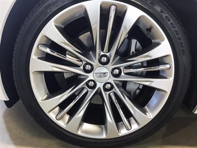 プラチナム 1年保証 新車保証(8枚目)
