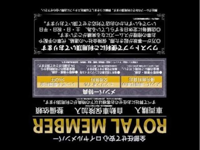ローデスト24G SDDナビ/フルセグ/ドライブレコーダー/ETC/Bluetooth/DVD再生/3列シート7人乗/禁煙車/1オーナー(30枚目)