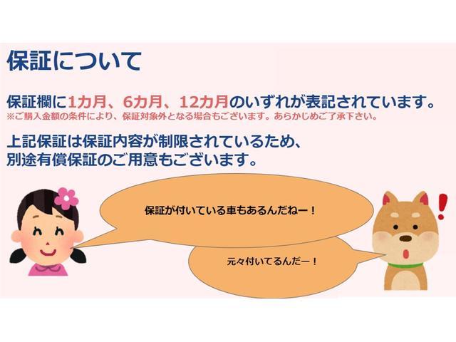 福祉車両トランスポーター リフト式車いす移動車 車いす2台積(12枚目)