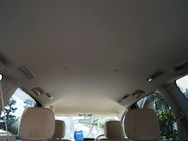 G 福祉車両電動スローパー(12枚目)