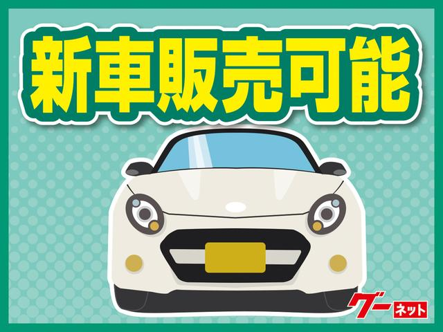 VE ワンオーナー禁煙車 ナビTV バッテリー新品(37枚目)